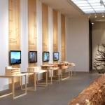 Bauen mit Holz - Wege in die Zukunft / Exponate + Baum