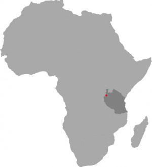 Tansania-0