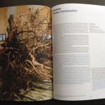 Holzbau Ausstellung Jahrbuch TUM 2012